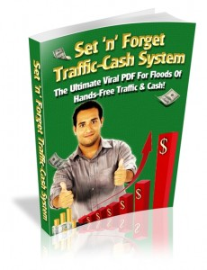 Set n Forget Traffic Cash System