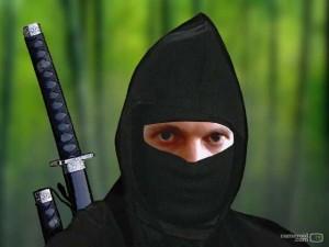 ninjastu